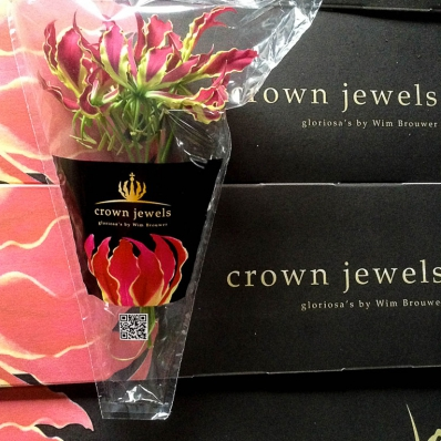 Crown Jewels Gloriosa by Wim Brouwer kartonverpakking en hoesverpakking